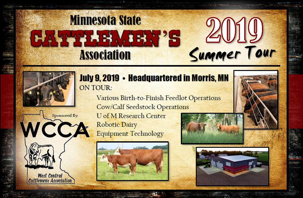 2019 MSCA Summer Beef tour half page.